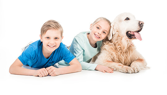 Stock Photo Kids with a Dog